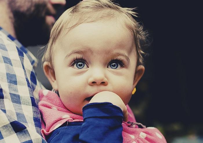 עגלת תינוק סייבקס